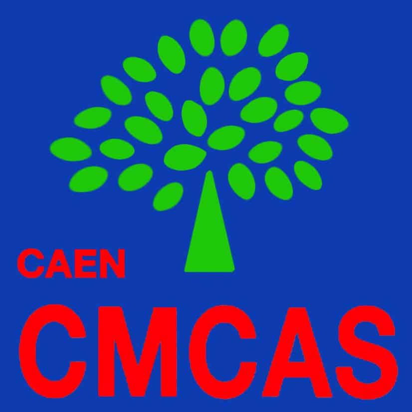 8-CMCAS